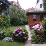 """Garten """"Haus Ingrid"""", Hortensien"""