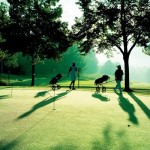 Golf im Thermenland Steiermark